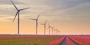 A wind turbine farm